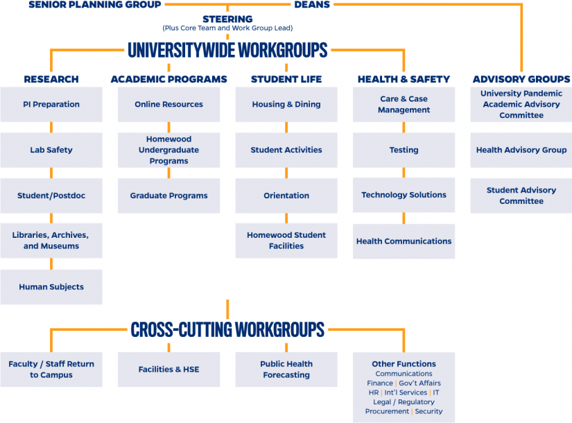 Johns Hopkins University Fall 2020 Planning Task Force Flow Chart