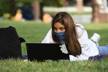 A female student studies outside in the grass with her laptop