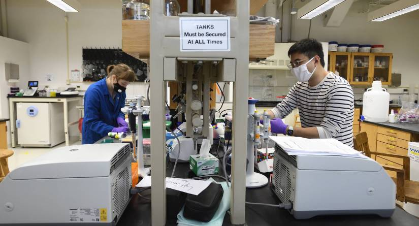 Fried Chemistry Lab reopens after Covid-19 shutdown